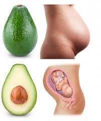 avokaado ja rasedus