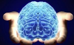 ilus aju