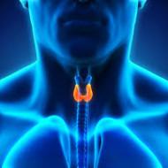 Kilpnääre on meie keha suurim endokriinne nääre, mis avaldab mõju viimsele kui keharakule. Tegu on elundiga, mis kontrollib meie ainevahetust ja kaalu, mõjutab aju tervist, hormonaalset tasakaalu ning LDL kolesteroolitaset. Kilpnäärme hormoonid stimuleerivad kasvu ja arengut ning on toeks kõikidele keha füsioloogilistele protsessidele. Loengus räägime: Millised faktorid põhjustavad häireid kilpnäärme töös Milliste sümptomite taha võivad […]