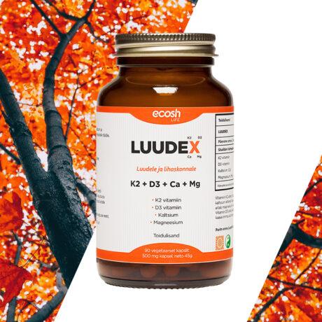 Luudex-2