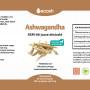 Ashwagandha-kirjeldus
