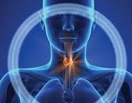 Kilpnäärmega seotud terviseprobleeme kohtab tänapäeval järjest sagedamini ja statistika põhjal on kilpnäärme vähk naiste seas kõige kiiremat spurti tegev vähivorm. Hoolimata kilpnääret puudutavatest teadusuuringutest ja rikkalikust kliinilisest kogemusest võib aga endiselt kohata visa järjekindlusega levivaid müüte, mis palju segadust tekitavad. Valeinfost lähtudes on lihtne teha viletsaid otsuseid ning halvemal juhul võib pseudotõdede järgimine viia […]